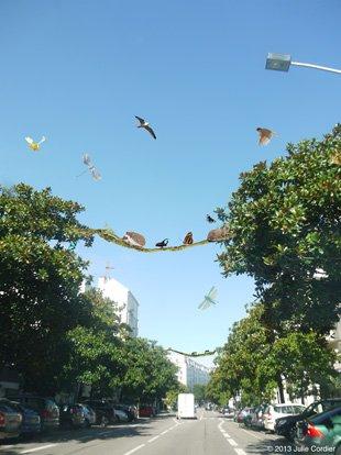 Enjeux environnementaux et biodiversité en ville; ecocity