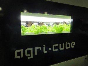 L'Agri-Cube permet de faire pousser différentes sortes de légumes dans un même espace confiné. Copyright : Daiwa House Industry