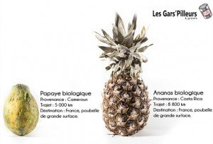 Chronique de Gars'pilleurs. Copyright : Les Gars'pilleurs