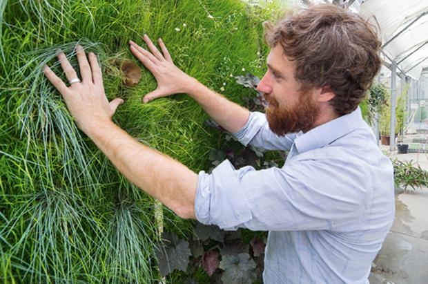 Yohan Hubert, directeur de l'Association française de culture hors-sol, devant un mur végétalisé. Copyright : A. Bosse-Platière / Terre Vivante
