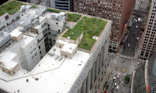 Toiture en partie végétalisée, au sommet d'un building de Chicago (Illinois). Copyright : Webz / Flickr