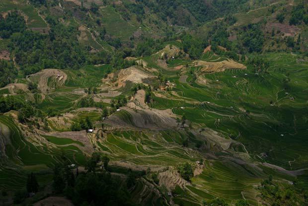 à Duoyishu, au cœur d'un territoire agricole encore bien préservé. Source : Architecture by Road