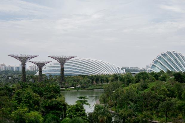 Les deux grandes serres du Botanical Garden - crédits Antoine Dubois