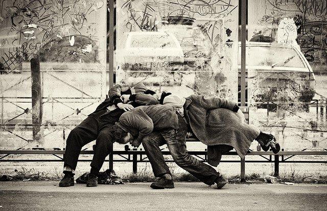 Dodo urbain - Crédits Oleg Kovalenko sur Flickr
