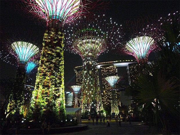 L'atmosphère nocturne dégagée par les Supertrees de Singapour rappelle l'esthétique du film Avatar, réalisé par James Cameron en 2009. Copyright : © Tee_Eric / Wikimedia