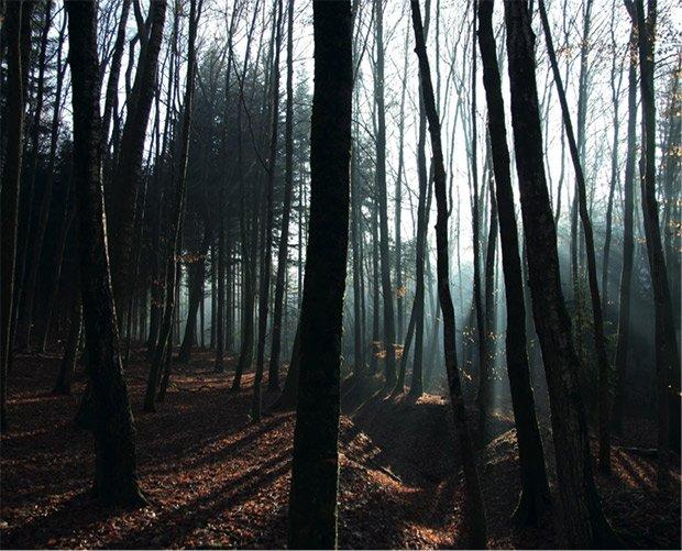 La cicatrice d'une tranchée, Boyau Français au Chamois Badonviller Source inconnue. Photographie présentée dans le diplôme « Le paysage lorrain, quels souvenirs pours quels horizons » de Ariane Dreyfus
