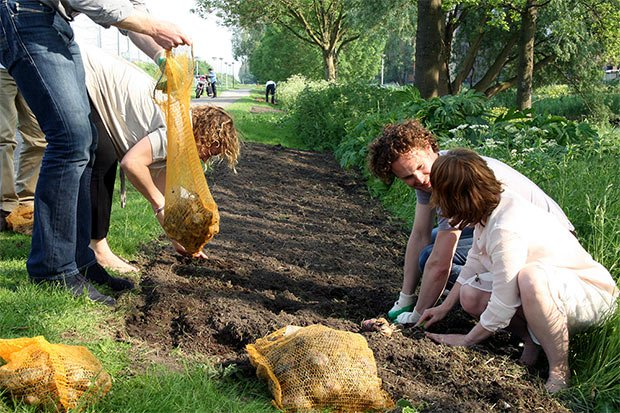 jardinage urbain zo city batiment