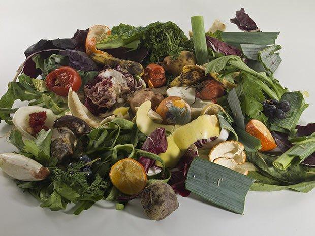 photo de dechets vegetaux
