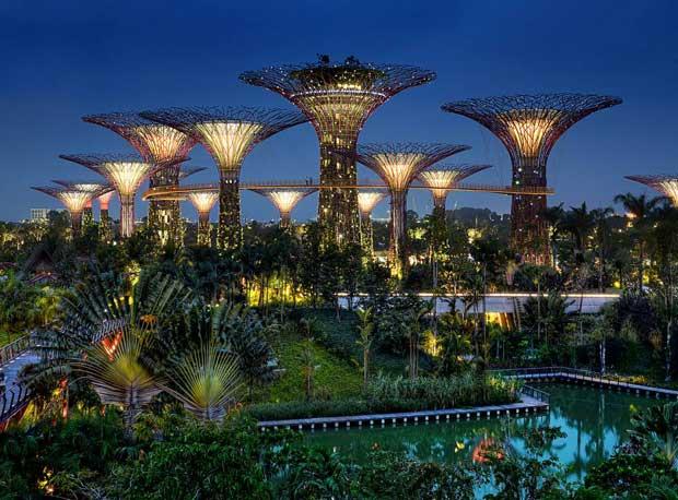 Dans la cité-état de Singapour, une forêt artificielle apporte aux habitants de l'énergie propre.