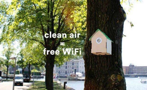 De fausses cabanes à oiseaux pour sensibiliser à la pollution urbaine