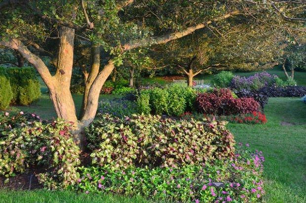 """""""Dans le jardin de mon âme"""" -Crédits Simon sur Flickr"""