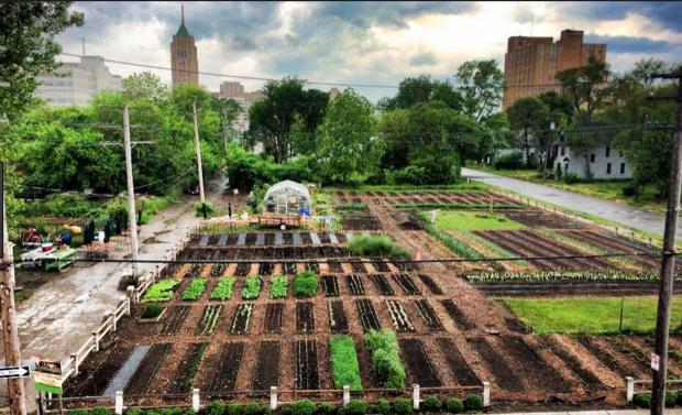 En 2016, la ville de Detroit a inauguré son premier quartier agricole