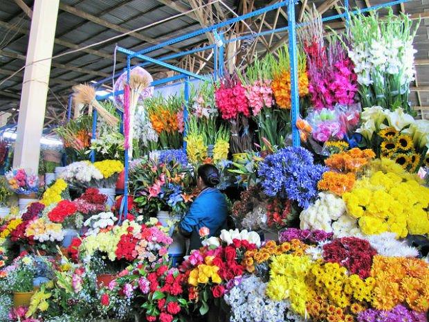 Cusco San Pedro Market Flowers