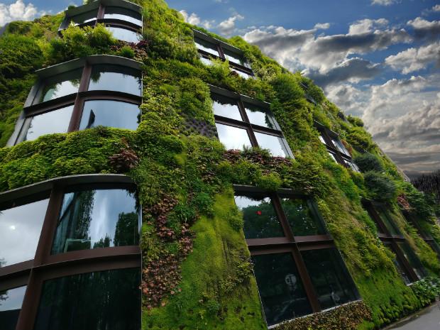 Les façades végétalisées permettent de réduire la chaleur et maintenir la fraîcheur.