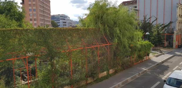 Le jardin habitants des Amaranthe dans le 7ème arrondissement de Lyon ©Camille Delbende