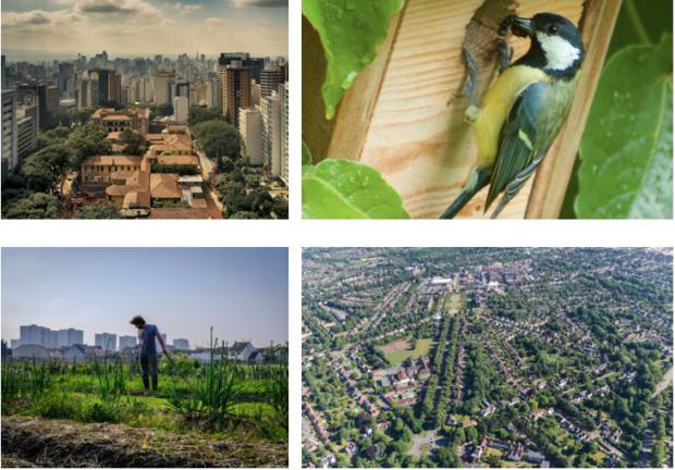 Best of Biodiversité