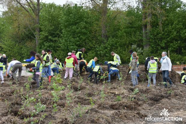Opération de reforestation - Reforest'Action