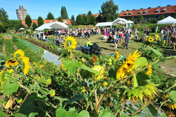 La ferme du Chant des Cailles est un projet d'agriculture urbaine de l'agglomération bruxelloise - Ferme du Chant des Cailles