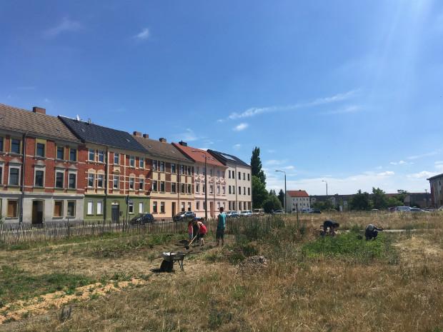 Au milieu des logements à Dessau, la Urbane Farm utilise les friches urbaines pour la production d'énergie renouvelable et de nourriture biologique - Gaëtan Kimmel