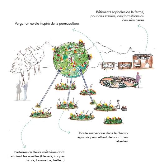 L'Oasis est une micro-architecture alliant pédagogie et expérimentation pour permettre aux futurs agriculteurs de se former à la sauvegarde des abeilles. © Camille Le Luhandre