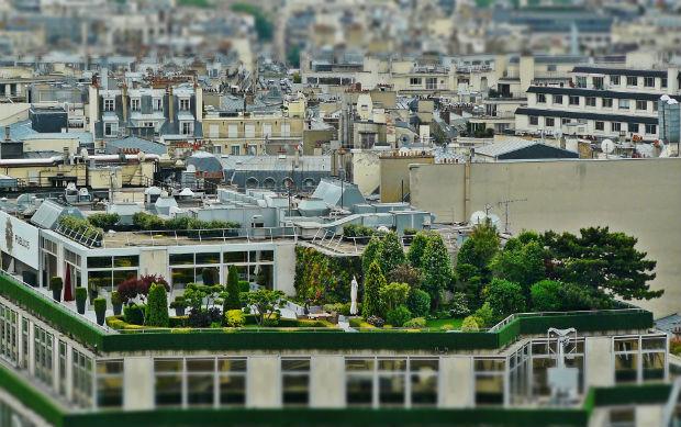 Un toit parisien aménagé et végétalisé - source : cocoparisienne via Pixabay