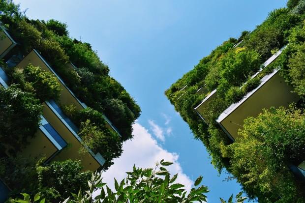Les immeubles milanais de Stefano Boeri portent les principes de végétalisation des projets de villes-forêts de cet architecte italien