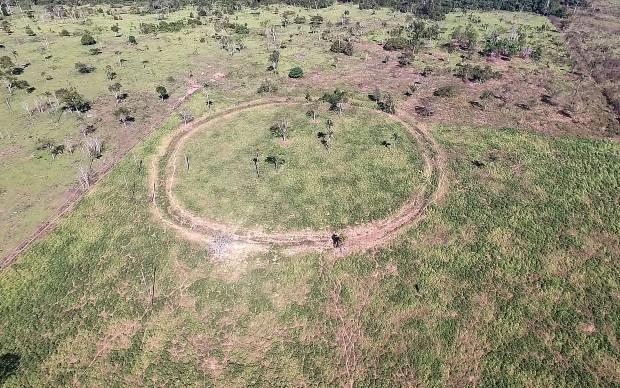 Travaux de terrassement précolombien - Université d'Exeter