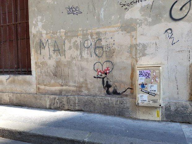 """Quand d'autres street-artists sont poursuivis en justice, le graffiti """"Le Rat"""" attribué à Banksy et situé rue Maître-Albert, a été recouvert un temps par un plexiglass pour le protéger - Streep"""