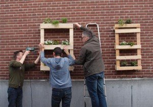 1.-DIY-planters-620