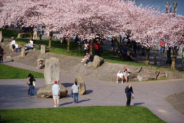 La ville de Portland (Oregon) a décidé dès les années 1970 de limiter son expansion urbaine et de développer la place des transports doux. Copyright : Patrick M / Flickr