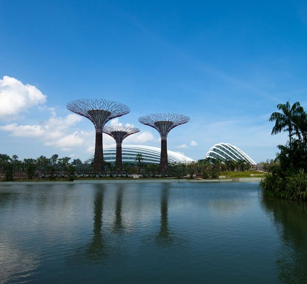 Gardens by the Bay, à Singapour