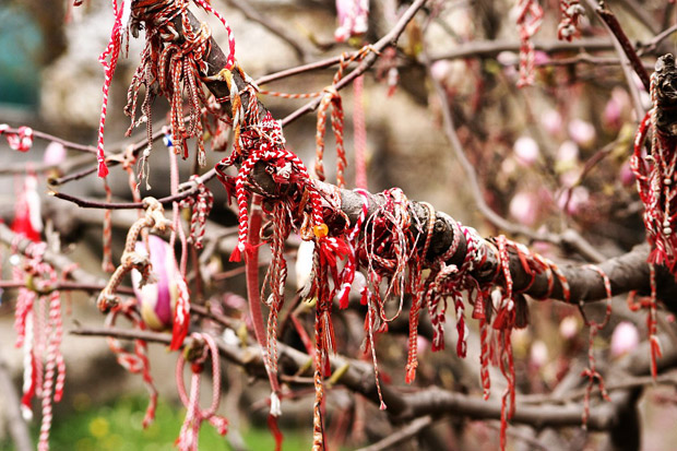 Martenitsa magnolia. Source : Wikipedia (http://en.wikipedia.org/wiki/Martenitsa)