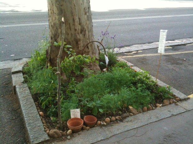 """""""Les plantes sont nos amis, et les toutous aussi… alors on leur a fait des sanisettes sur les petits cailloux. Merci."""""""