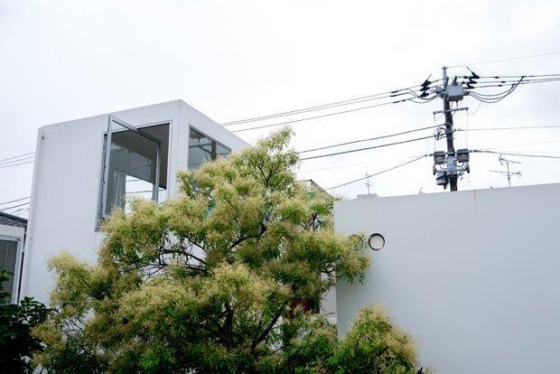 La maison de monsieur Moriyama est pensée au milieu d'un jardin, la nature s'exprime au cœur de la maison. Crédits : Antoine Dubois