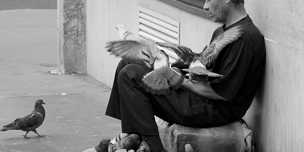 Homeless aux pigeons : Paris ; Copryright : Guiguit / Flickr
