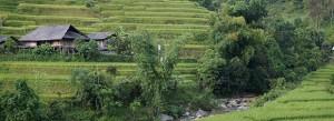 Habitat Vietnamien - Ha Giang : Photographe : Clément Pairot