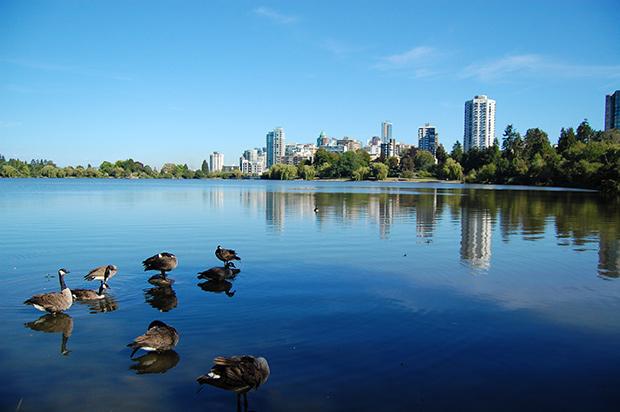 Stanley Park - Vancouver. Copyright : Zotium / Wikimedia