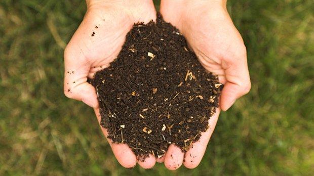 Le lombri-compostage, une technique hors-sol, qui permet de récupérer d'une part du compost mais aussi du jus de compost.