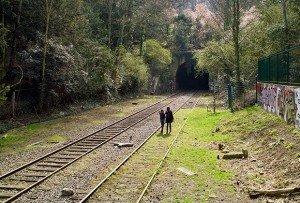 rail-nature-620