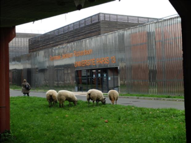Sur le campus de l'université Paris XIII à Villetaneuse © Jasmine Léonardon