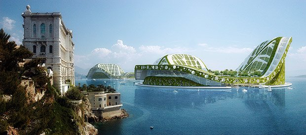 lilypad-nenuphar-geant-amazonie-architecture