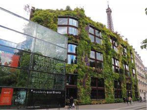 Le mur végétalisé du musée du Quai Branly, inauguré en 2012, rencontre un grand succès.