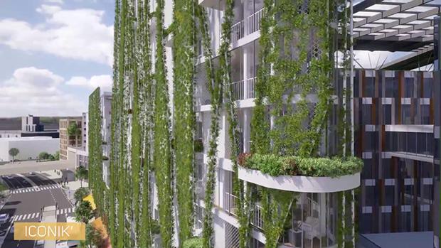 biodiversite dans ce nouveau quartier