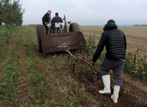 labourage des champs de Novaedia