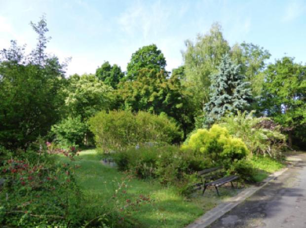 À l'image de l'arboretum cimetière parc de Nantes, les cimetières sont amenés à évoluer (c) Charlotte Quesnel