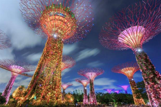Le Marina City Park à Singapour / Crédit : DavidWebb / Shutterstock.com