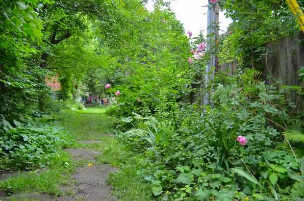 La nature en ville est source de qualité de vie.