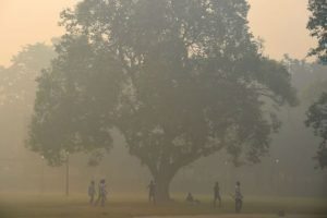 Un parc de New Delhi couvert par la pollution